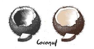 椰子手拉的剪影在单色和五颜六色的 详细的素食食物图画 免版税库存照片