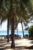 椰子旅馆 库存照片