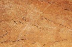 椰子木头 库存照片
