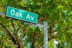 椰子树丛都市风景 免版税图库摄影