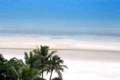 椰子树和海洋有爱心脏的在沙子塑造在 免版税图库摄影
