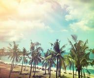 椰子树和海滩木床在白色沙子与美丽 库存照片
