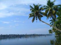 椰子树蓝天湖 免版税库存图片