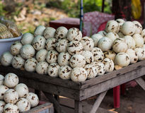 椰子汁商店在泰国 库存照片