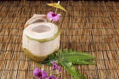 椰子汁 图库摄影