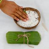 椰子温泉 免版税库存照片