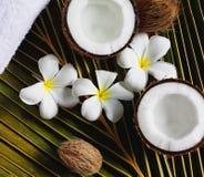 椰子温泉 免版税库存图片