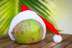 椰子的热带图片在圣诞节红色帽子棕榈叶的 免版税库存照片