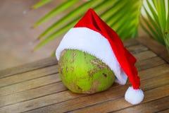椰子的热带图片在圣诞节红色帽子棕榈叶的 库存图片