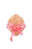 椰子礼物 免版税库存照片