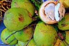 椰子组 免版税库存照片