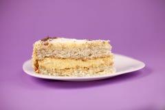 椰子蛋糕 库存图片