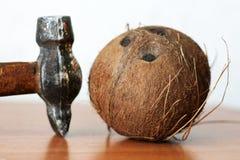 椰子说谎出现与附近的锤子 库存图片