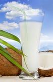 椰子饮料异乎寻常的旅行 图库摄影