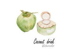 椰子饮料 在白色背景的手拉的水彩绘画 也corel凹道例证向量 免版税库存图片
