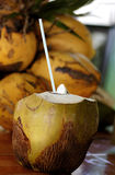 椰子饮料 图库摄影