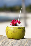 椰子饮料 免版税图库摄影