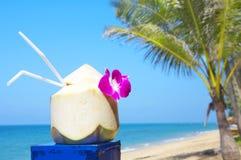椰子饮料 库存图片