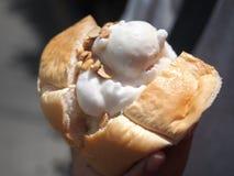椰子饯奶油 免版税库存图片