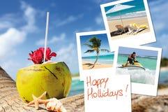 椰子鸡尾酒、海星和pics 免版税库存图片