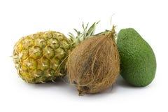 椰子,鲕梨,菠萝 免版税图库摄影