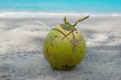 年轻椰子 巴厘岛印度尼西亚 免版税库存照片