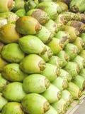 椰子水的椰子 免版税库存图片