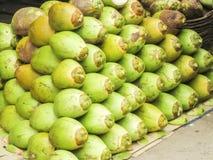 椰子水的椰子 图库摄影