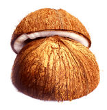 椰子 图库摄影
