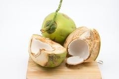 年轻椰子 免版税库存照片