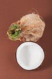 椰子Halfs在背景的 库存图片