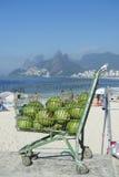 椰子Ipanema海滩里约热内卢巴西 免版税库存照片
