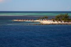 椰树岩礁巴哈马 免版税库存照片