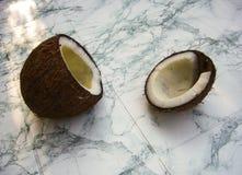 椰树热带水果 图库摄影