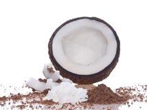 椰树黏浆状物质 免版税库存图片