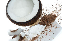 椰树黏浆状物质 免版税图库摄影