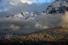 楚格峰山惊人的场面  包括的雪结构树 在加米施・帕藤吉兴,巴伐利亚,德国附近的巴法力亚峰顶 库存照片