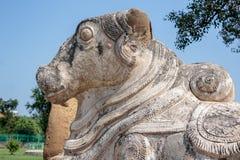 楠迪在Pallavas的古老印度寺庙,甘吉布勒姆印度的公牛雕象 库存图片