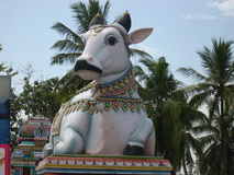 楠迪的硕大神象,公牛上帝,在一个希瓦寺庙之外在南印度 免版税库存照片