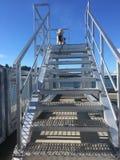 楼梯向洛拉 免版税库存图片