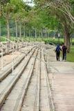 楼梯和步在公园 免版税库存照片