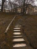 楼梯在公园 库存照片