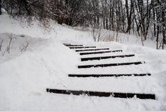 楼梯在雪银行中 免版税图库摄影