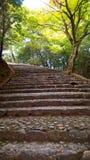 楼梯在Arashiyama竹树丛森林,京都里 库存图片