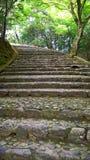 楼梯在Arashiyama竹树丛森林,京都里 免版税库存图片