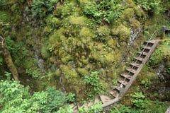 楼梯墙壁 免版税库存照片
