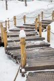 楼梯清扫了雪 库存图片