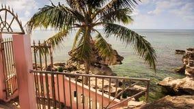 楼梯铁栏杆带领海石头在海滩的棕榈 股票视频