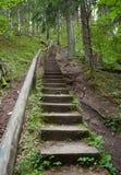 楼梯 免版税图库摄影