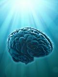概念创造性知识 库存图片